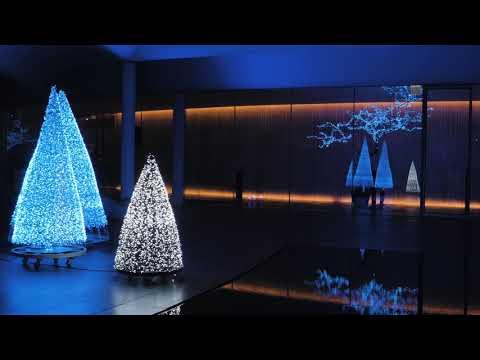 2018 Christmas Tree Lighting Ceremony @ South Cape Spa & Suite KR Teaser