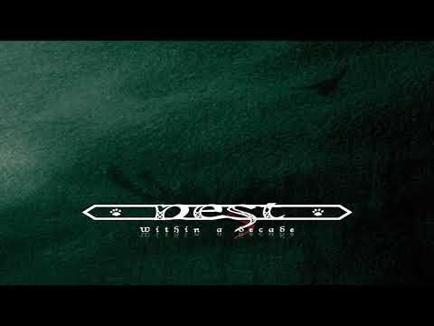 Nest - Within a decade (Full Album)