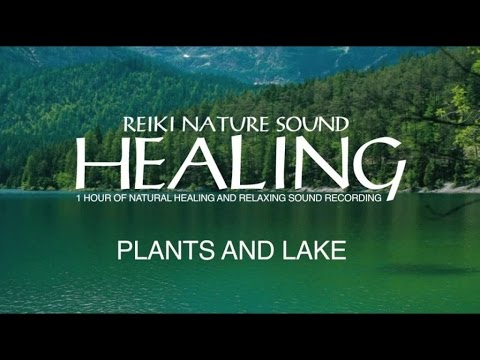 iReiki - Reiki Healing - Plants and Lake - 1Hour of Natural Healing and Relaxing Sound Recording