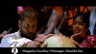 Elangaathu Veesudhey   Pithamagan   Mandolin Kasi