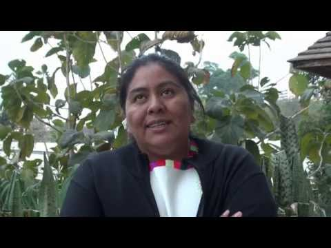 Natalia Sarapura on Indigenous Women Working for Their Rights
