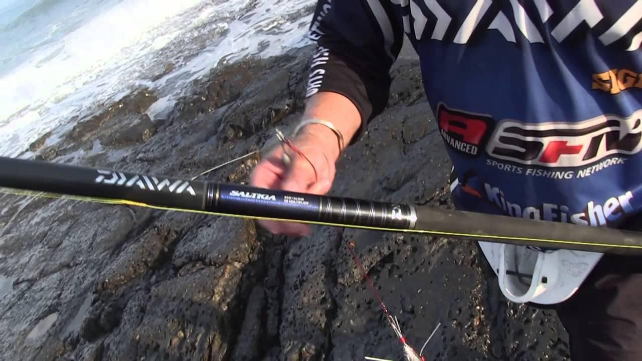 ASFN Rock & Surf Team DAIWA Rock & Surf Port St Johns targeting Raggies