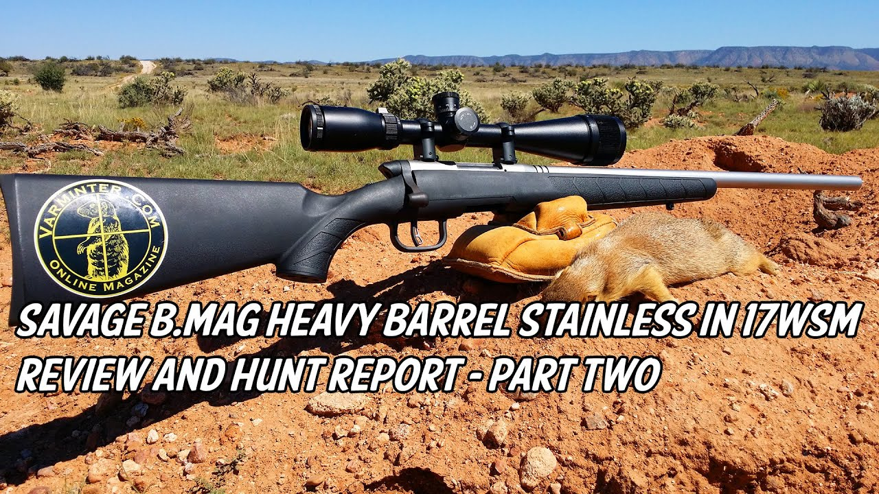 Savage bg heavy barrel stainless in 17wsm review and hunt report savage bg heavy barrel stainless in 17wsm review and hunt report part two sciox Images