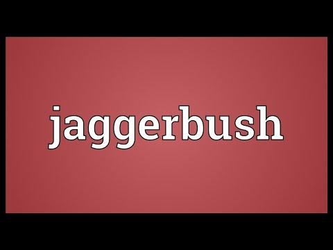 Jaggerbush Meaning