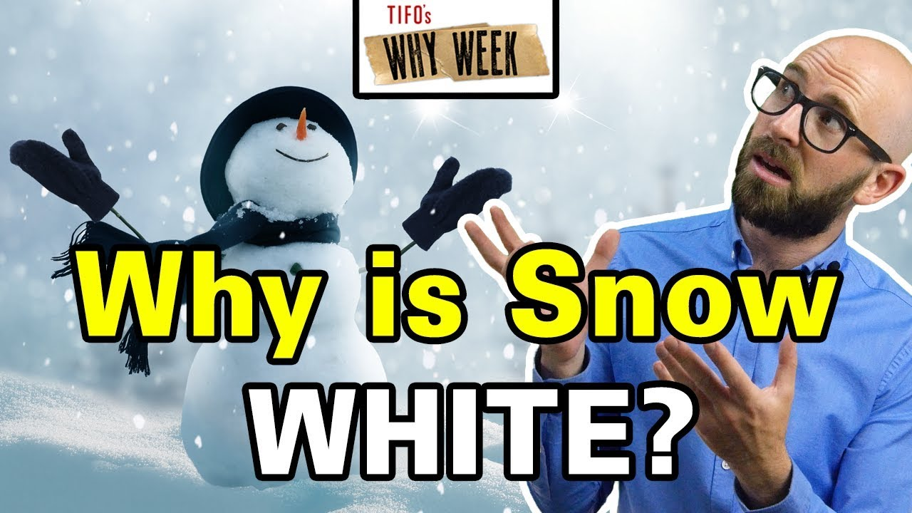 why-week-why-is-snow-white-given-snowflakes-are-clear