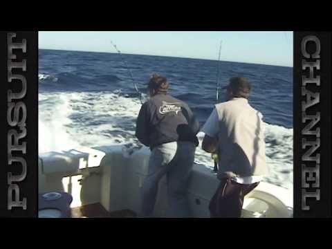 Capt. Ron's Ocean Explorer Great White Shark Episode