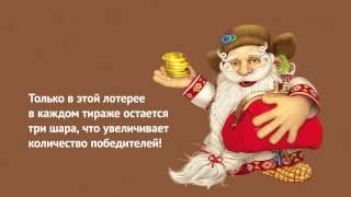 Лотерея «Золотая подкова»: как купить билет на сайте www.stoloto.ru