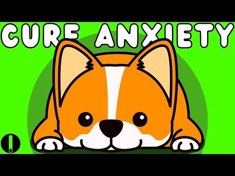 Anti Anxiety Music For Dogs - Cure Separation Anxiety With Dog Music