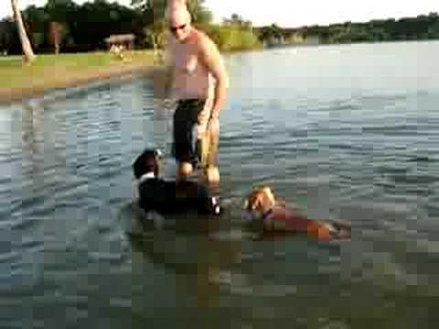 Rony nadador 3