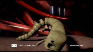 TLC - Монстры внутри меня