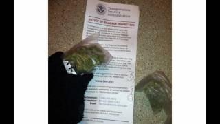 Marijuana Note from TSA to Rapper Freddie Gibbs