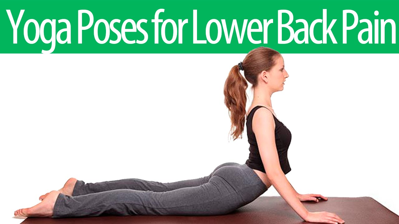 5 Yoga Poses For Lower Back Pain For Yoga Beginners Amazing Exercises To Relieve Lower Back Pain Youtube