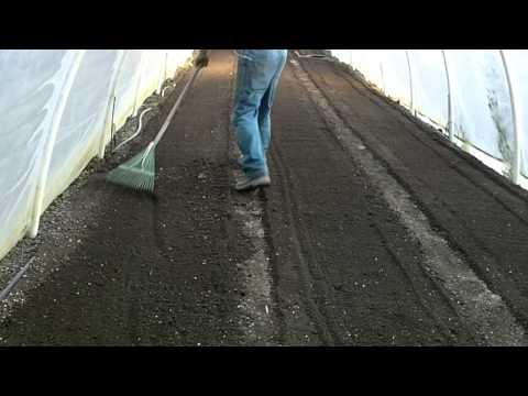 greenhouse-work