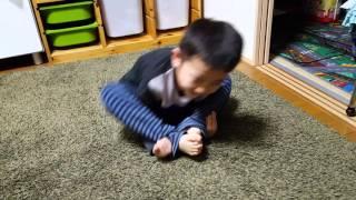 Jr.2号が芋虫で遊んでたので撮ってみた.
