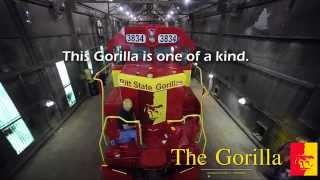 The Gorilla Train