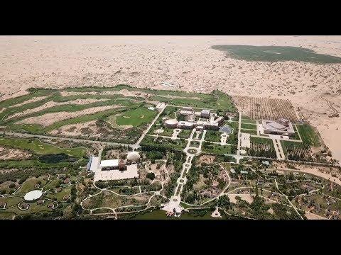 ABE: Chine, des arbres contre le désert !