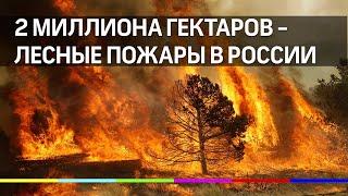 Горит более 2 млн. га леса в Сибири и на Дальнем Востоке