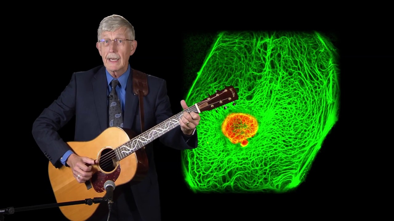 A Tribute to Dr  Robert Goldman from NIH Director Dr  Francis Collins