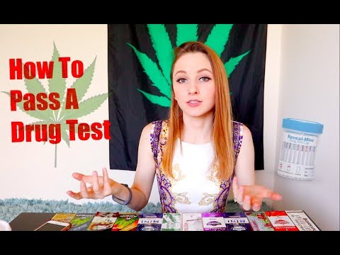 Cleaning Your System Of Weed // THC Detox