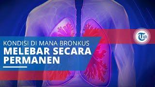 Frequent Cough Caution Bronchitis Ayo Hidup Sehat tvOne membahas tentang Sering Batuk Hati-hati Bron.