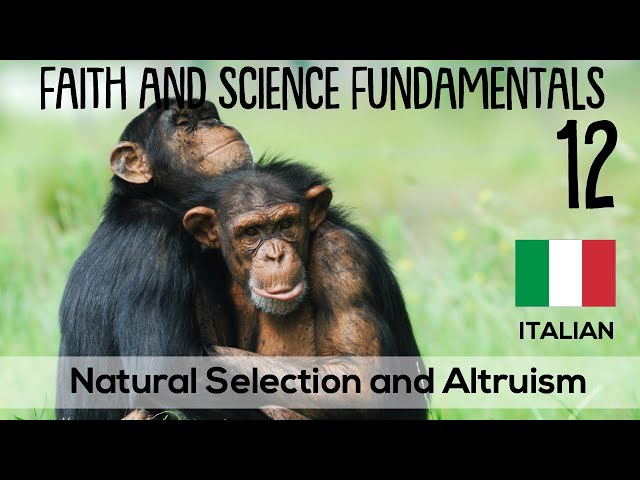 ITALIAN (12/16) NATURAL SELECTION AND ALTRUISM - FAITH AND SCIENCE FUNDAMENTALS