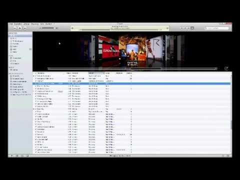 Musik von iTunes in den Media Player kopieren