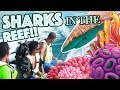 SHARKS IN THE REEF! : ATLANTIS BAHAMAS VLOG DAY 3 LAST DAY| KENDRICK FAMILY VLOGS