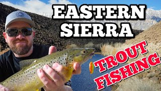 Pleasant Valley Reservoir Eastern Sierra TROUT FISHING Bishop California 4K