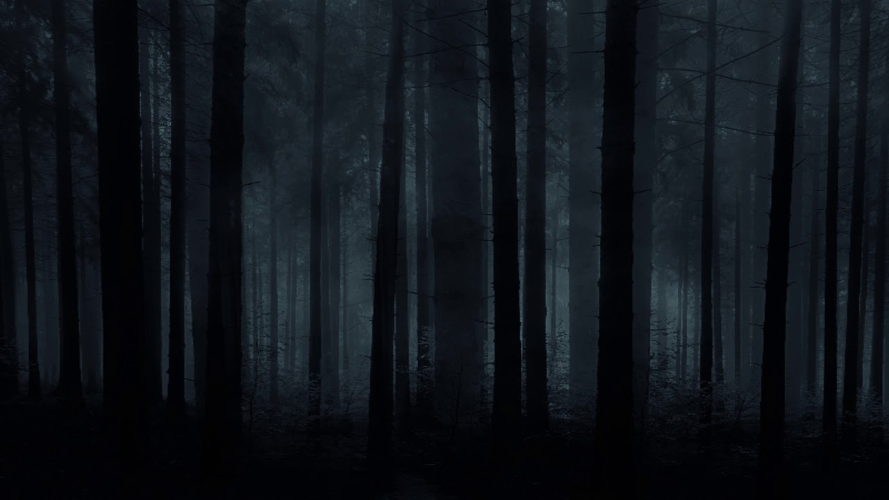 forest horror background photoshop creepy dark scary backgrounds night halloween nature texture cool trees music grass textures anime tree fantasy