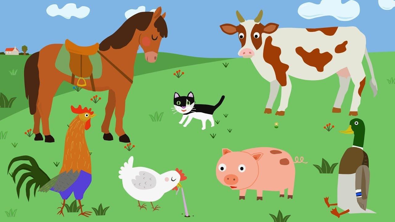 Домашние животные на ферме - Уроки от Сороки - Farm animals
