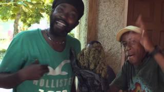 Jamaica - Big Bag of Weed and Freestyle Rap