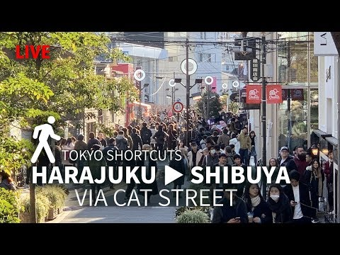 Harajuku to Shibuya via Cat's Street
