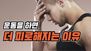 운동을 하면 더 피로해지는 이유 ft.운동 회복