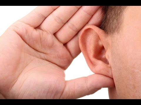 Как звук проходит через ухо