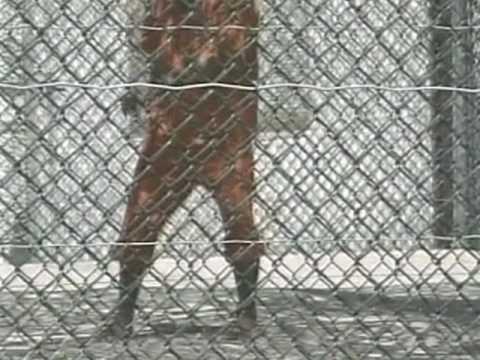 UN Postpones Report on Secret Detention of Terror Suspects