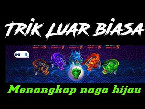 TRIK 5 DRAGON TANGKAP 2 NAGA| INFO ROOM 5 DRAGON TERBARU HARI INI