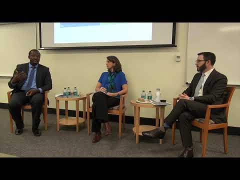 Alma-Ata's 40th Anniversary: A DGHI Panel Discussion