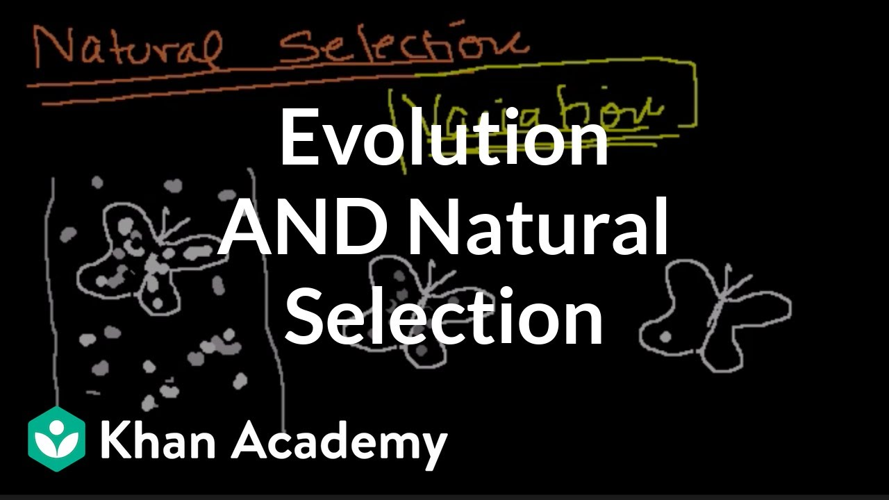 Introduction to evolution and natural selection (video