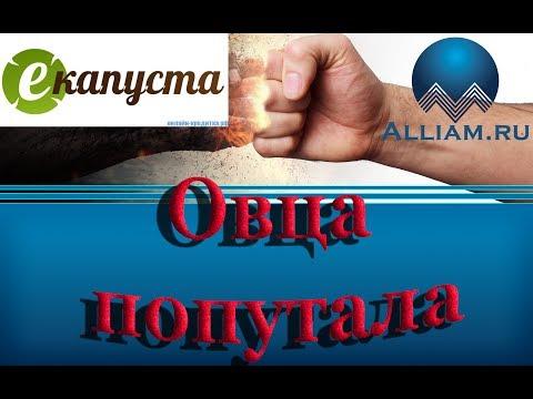 ИНТЕРНЕТ ЗАЙМ/ГЕРПЕС АДОЛЬФОВИЧ/РАЗМАЗАЛ КОЛЛЕКТОРА/слушать/Как не платить кредит.  домашние деньги