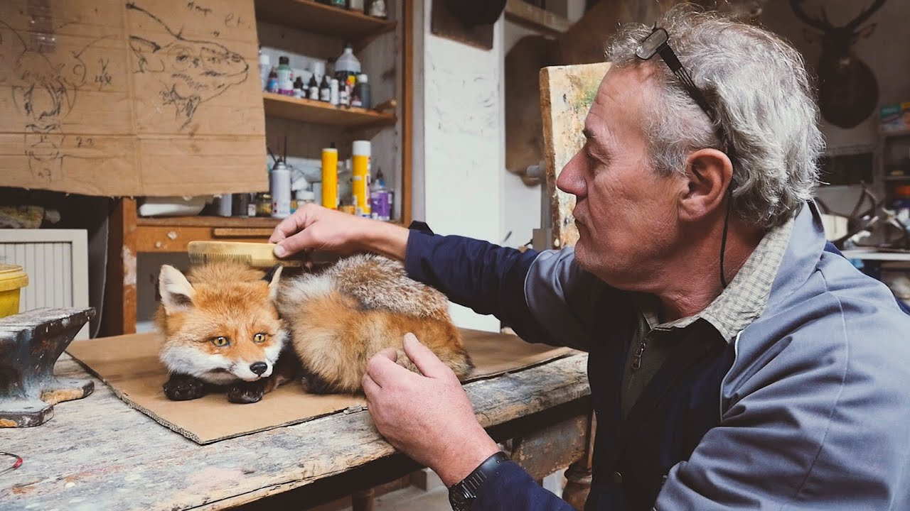 taxidermiste in english