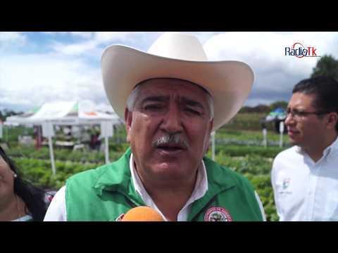 La CNC seguirá apoyando la Expo Hortícola de los Reyes de Juárez