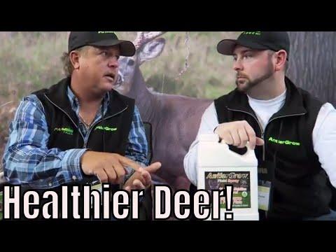 How To Grow Healthier Deer | Antler Grow Wildlife Management