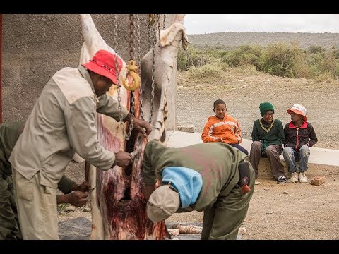 Hunting For Meat In Africa [THE HUNGER]