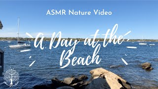 ASMR ✨ | A Day At The Beach [Nature] [Ocean Sounds]