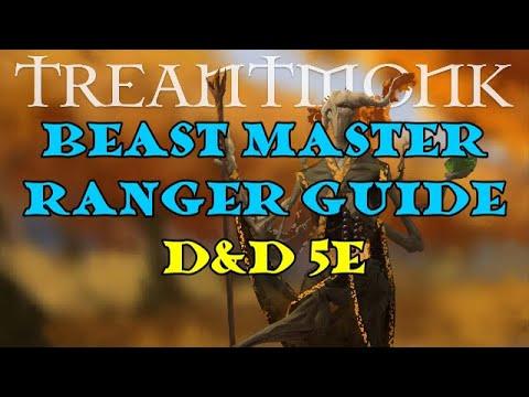 Beast Master Ranger Guide D&D 5e