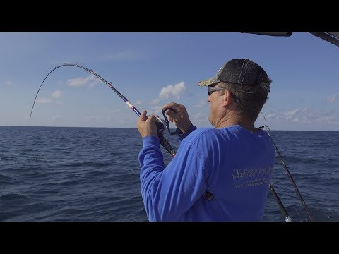 Deep Sea FISHING! {Catch Clean Cook} Surprising Results!