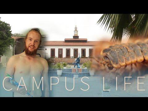 Travel Vlog Ghana - Episode 6