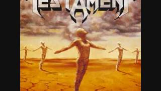 Testament-Envy Life