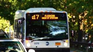 MTA New York City Bus & MTA Bus : 164th St & Horace Harding Expwy [ Queens Division Q17, Q65 & Q88 ]