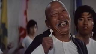 Мастер кунг фу по имени Кот